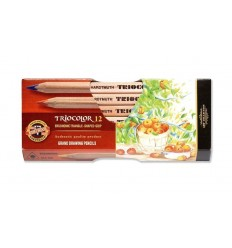 Набор цветных трехгранных карандашей Koh-I-Noor TRIOCOLOR Natur 3152, утолщенный корпус D-10,5мм, 12 цветов