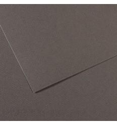 Бумага для пастели CANSON Mi-Teintes  А4 21*29.7см 160гр., Цвет №345 Серый темный, 50л/упак,