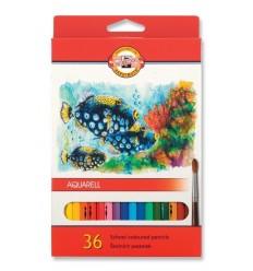 Набор акварельных цветных карандашей Koh-I-Noor AQUARELL 3719 Рыбки, 36 цветов