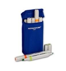 Набор пигментных маркеров Potentate Bag Set 12 цветов ((water based)